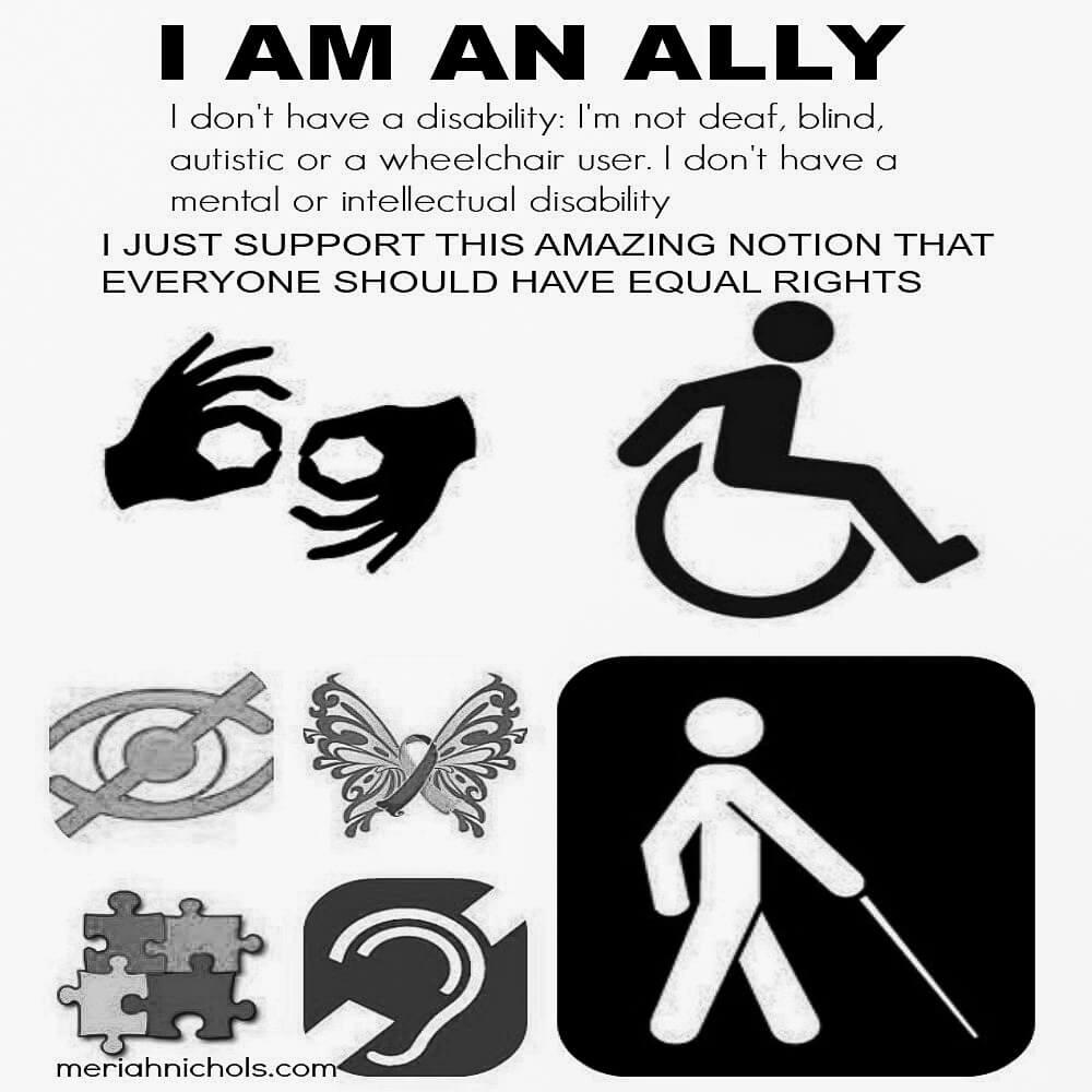 disability ally by meriah nichols