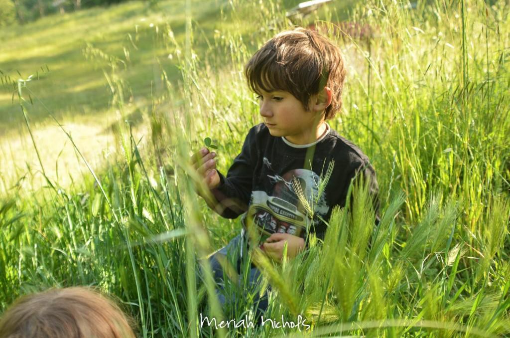 meriah nichols july (3 of 16)
