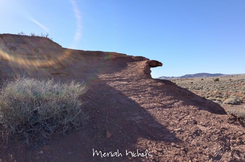 meriah nichols arizona-15