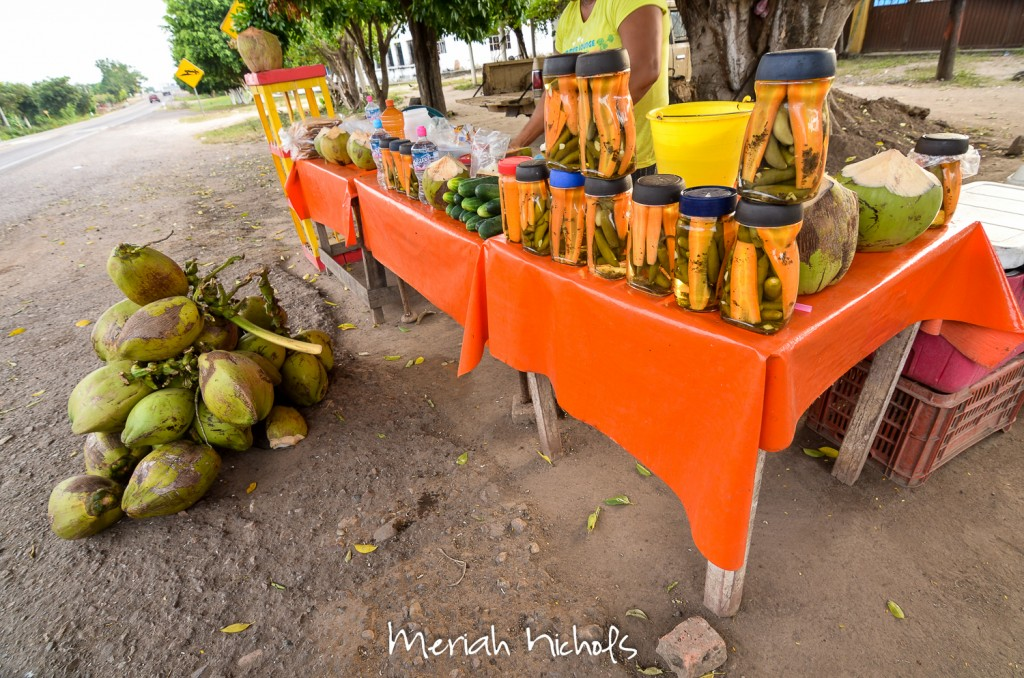 coconut juice and homemade jalepeno pickle stand
