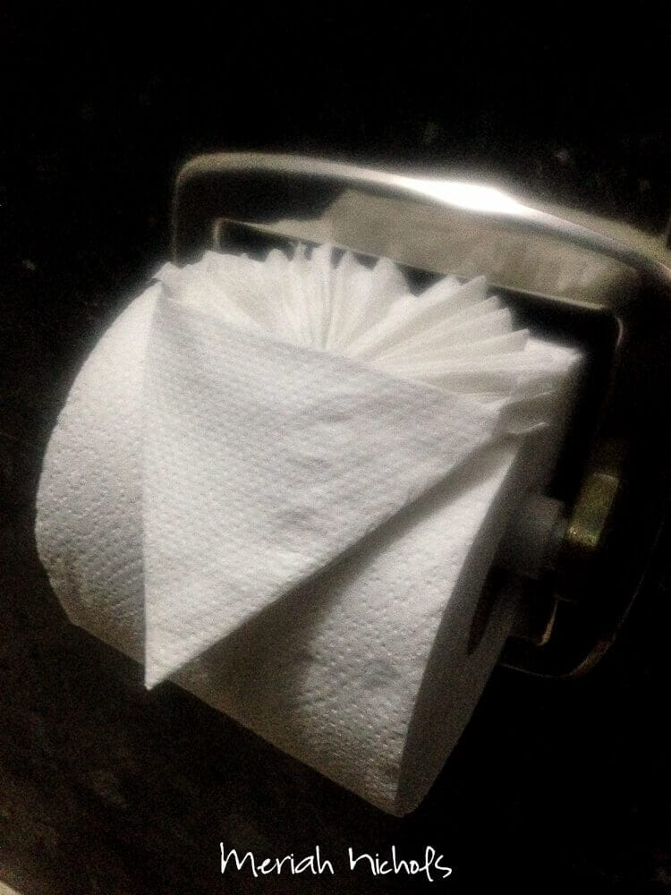even the toilet paper was nice in the hotel that accepted us