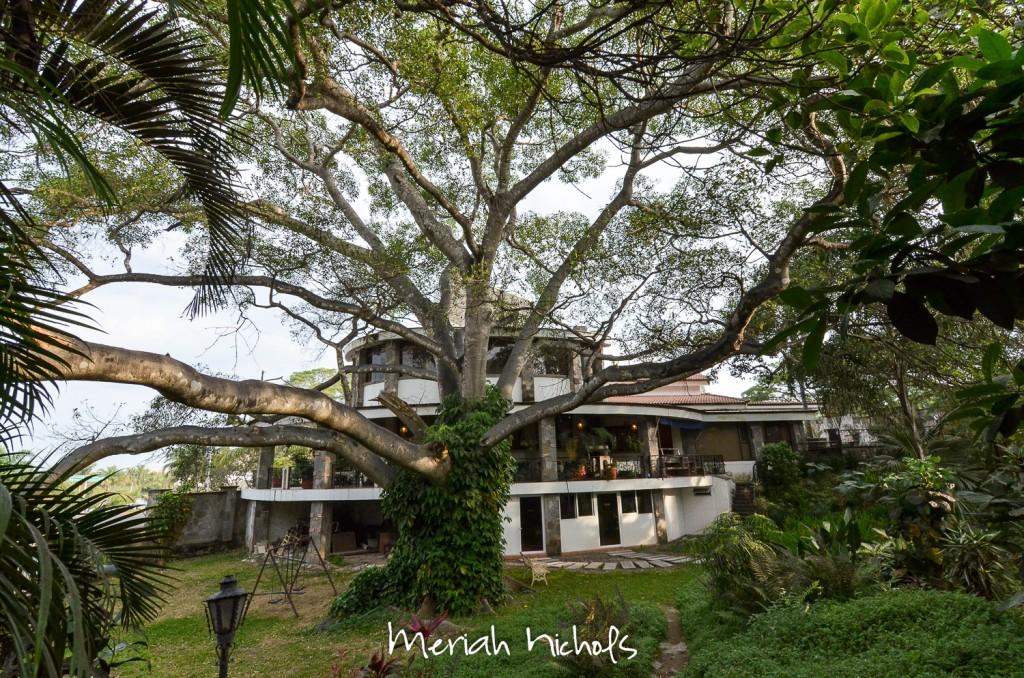 meriah nichols tepic mexico-6