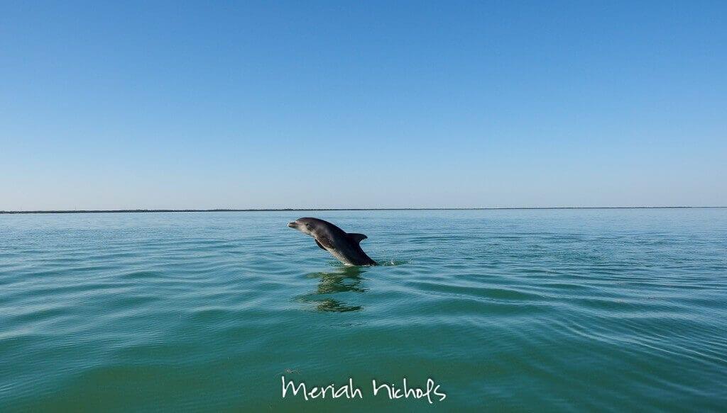 meriah nichols mexico-31