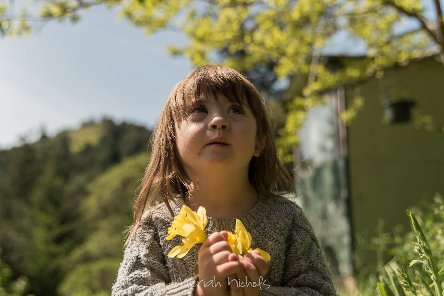 child with Down syndrome holds yellow daffodils and looks up