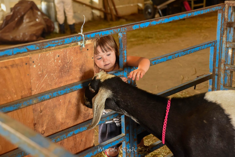 Meriah Nichols Humboldt County Fair-34