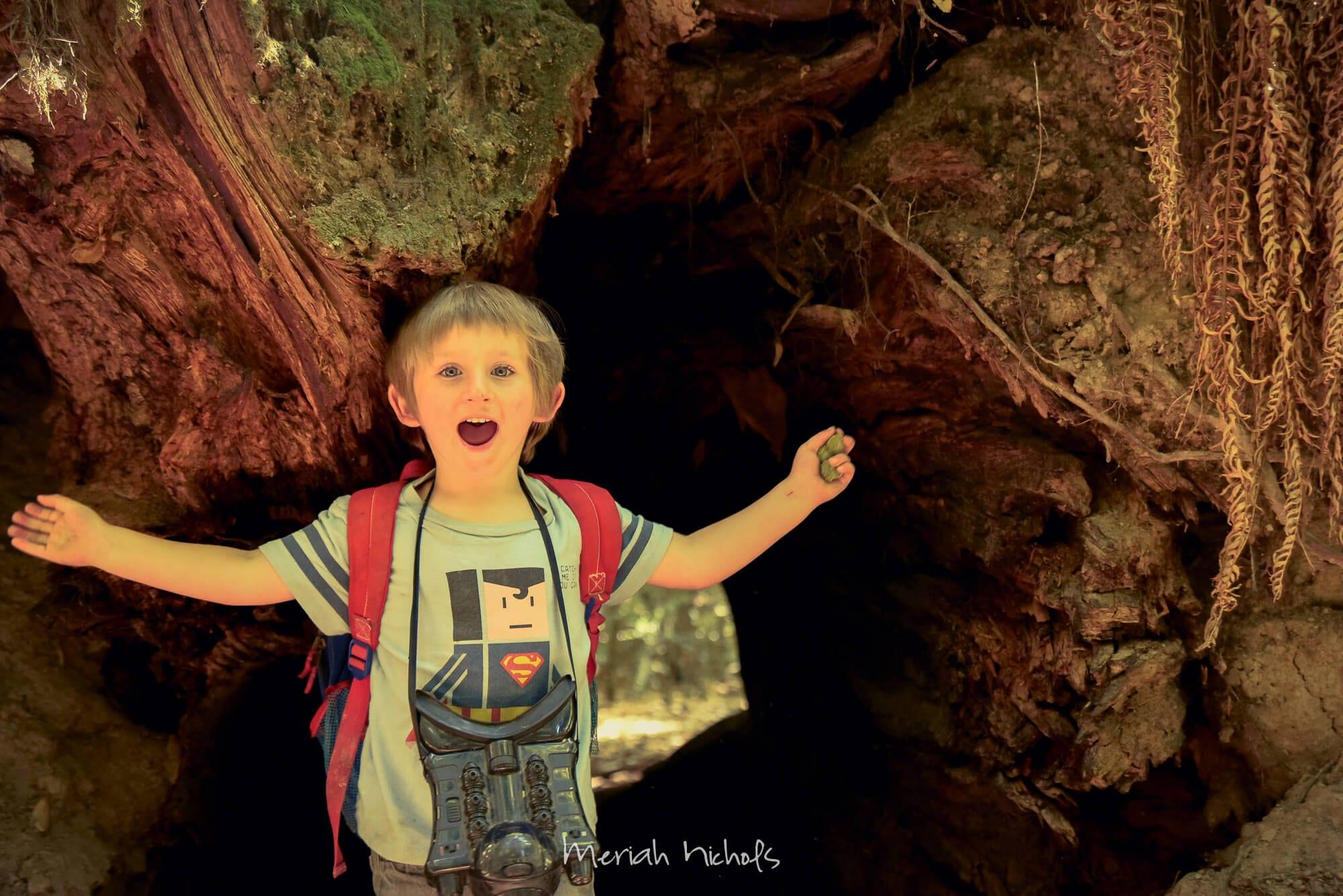 Meriah Nichols Redwoods-2