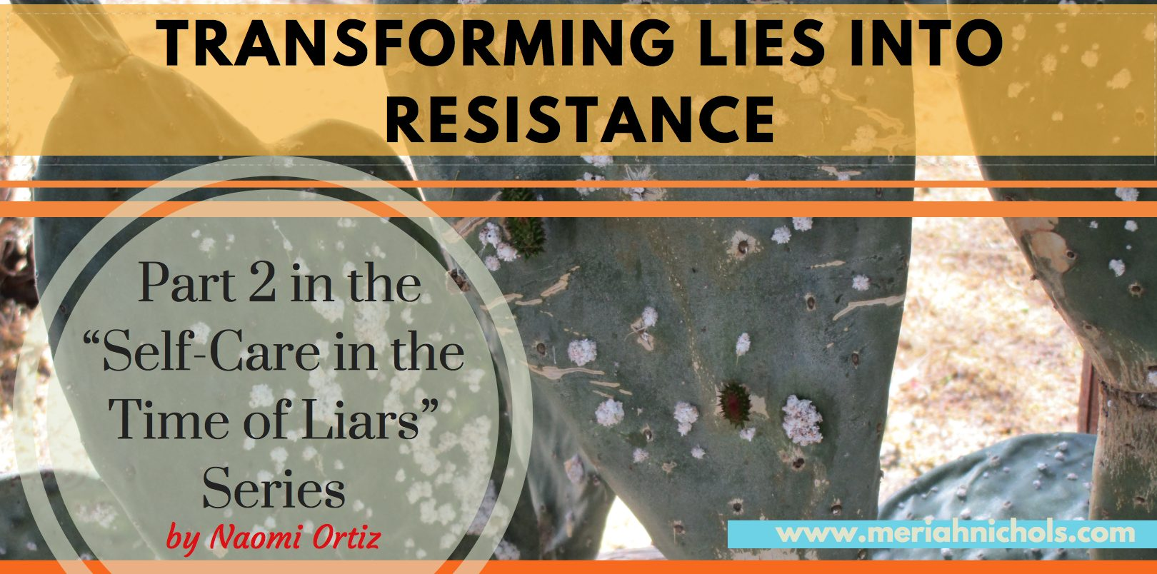 Transforming Lies into Resistance: Part 2 int he Self Care in the Time of Liars series by Naomi Ortiz