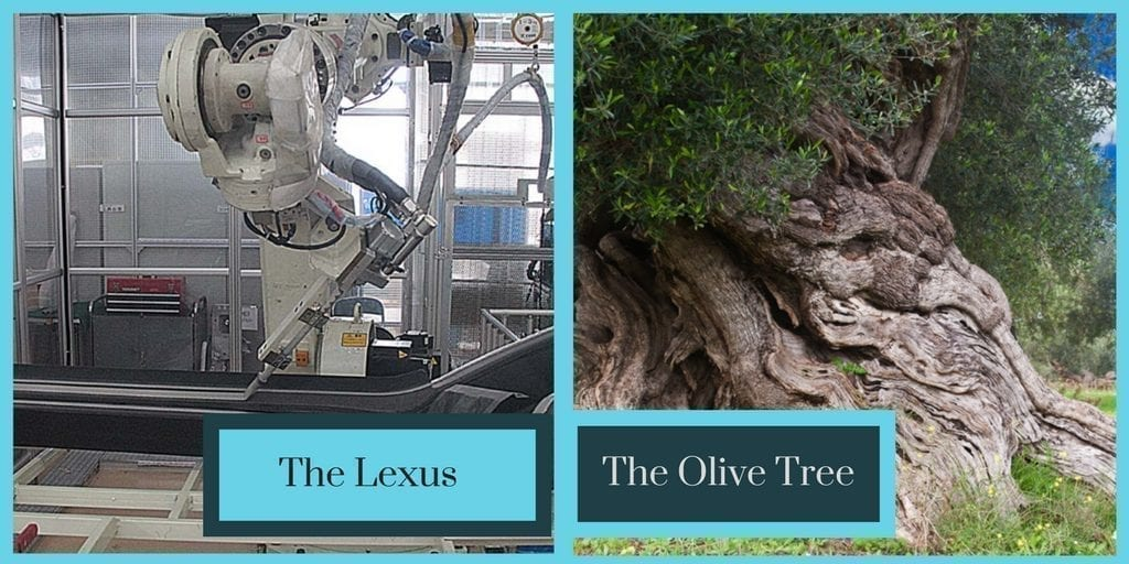 "Website Development as a Means of Disability Empowerment: image of a robot performing something complex to a lexus, a text box reads ""the lexus""; on the right is another photo of an old olive tree. a text box by the image reads, ""the olive tree"""