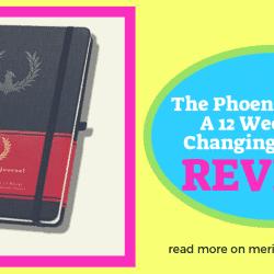 the phoenix planner phoenix journal