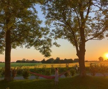 denmark country sunset