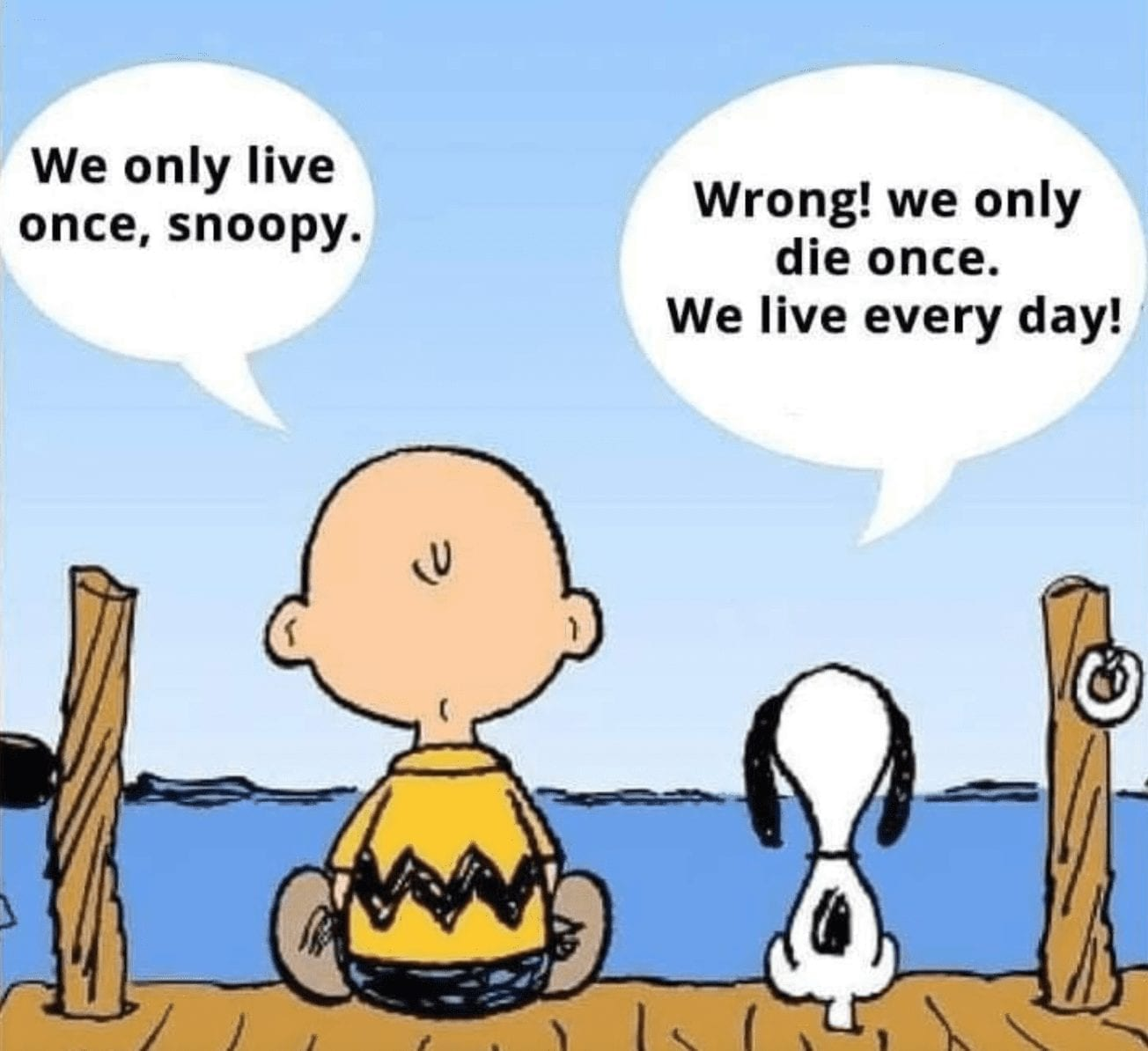 """charlie brown and snoopy sit facing water, with their backs to the viewer. A speech bubble from Charlie Brown says, """"We only live once, Snoopy."""" and Snoopy's speech bubble says, """"Wrong! We only die once. We live every day!"""""""