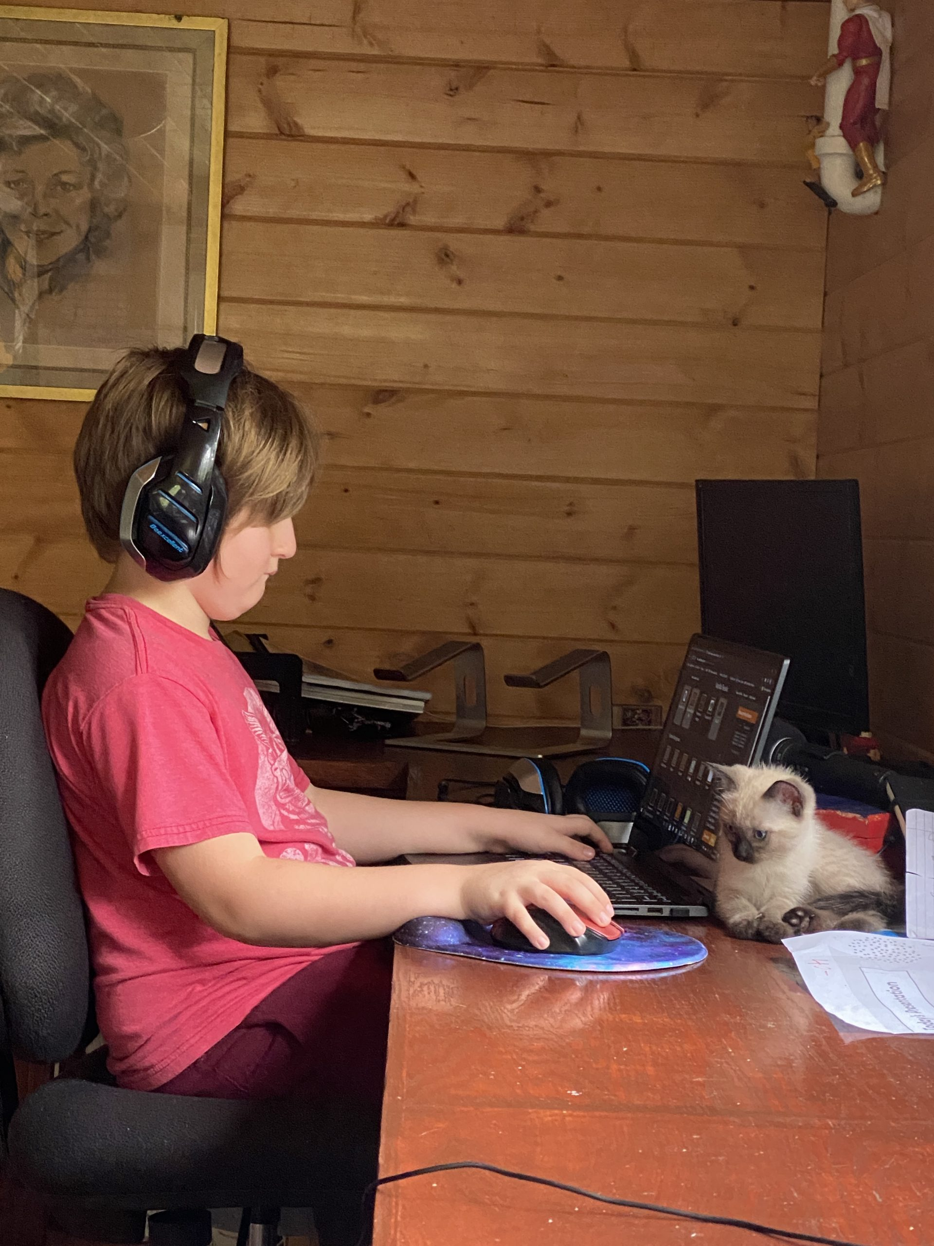 little boy at his computer with his cat behind