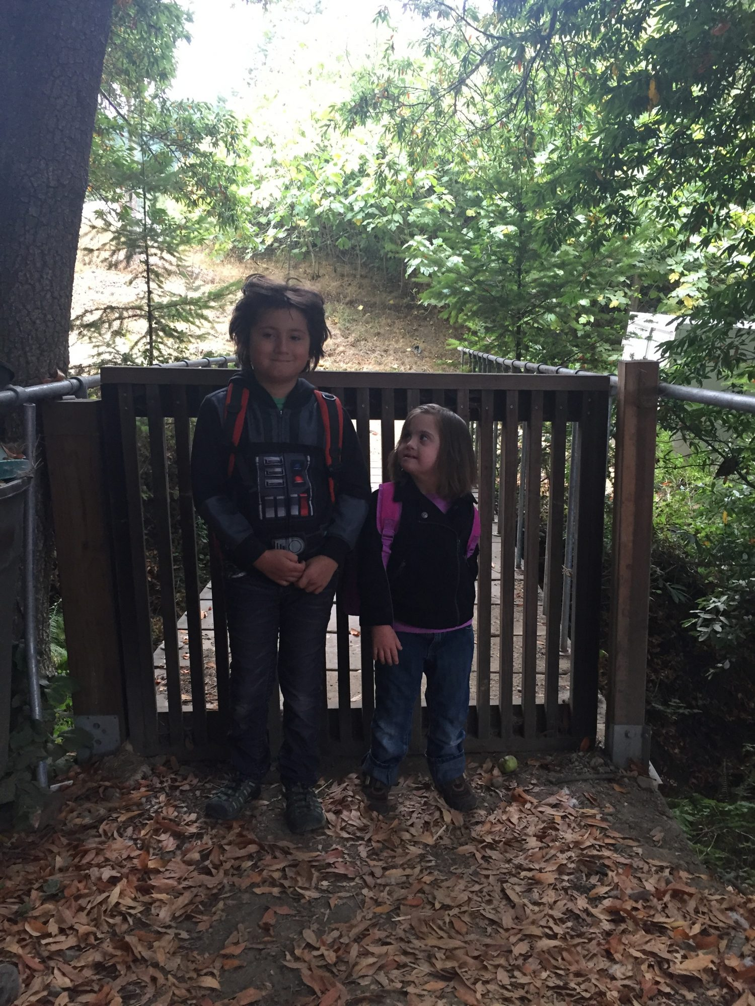 2 kids by a gate, the girl is looking up at the boy