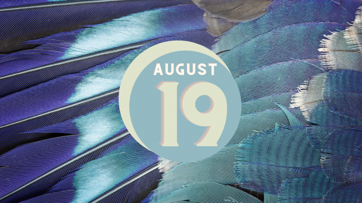 August 19: Sepsis