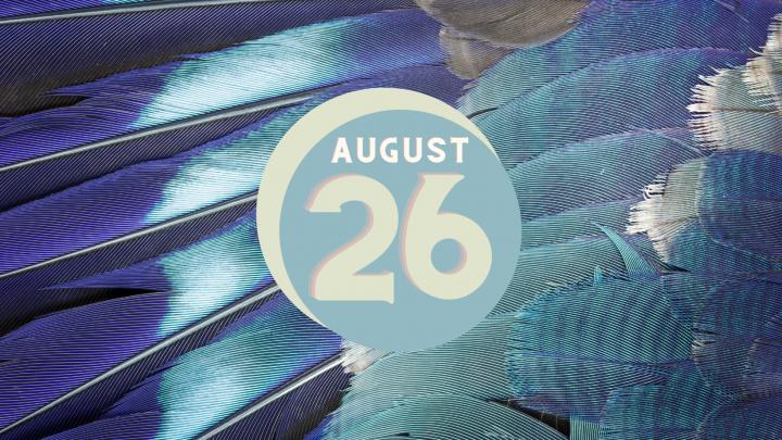 August 26th: The Gun Sticker