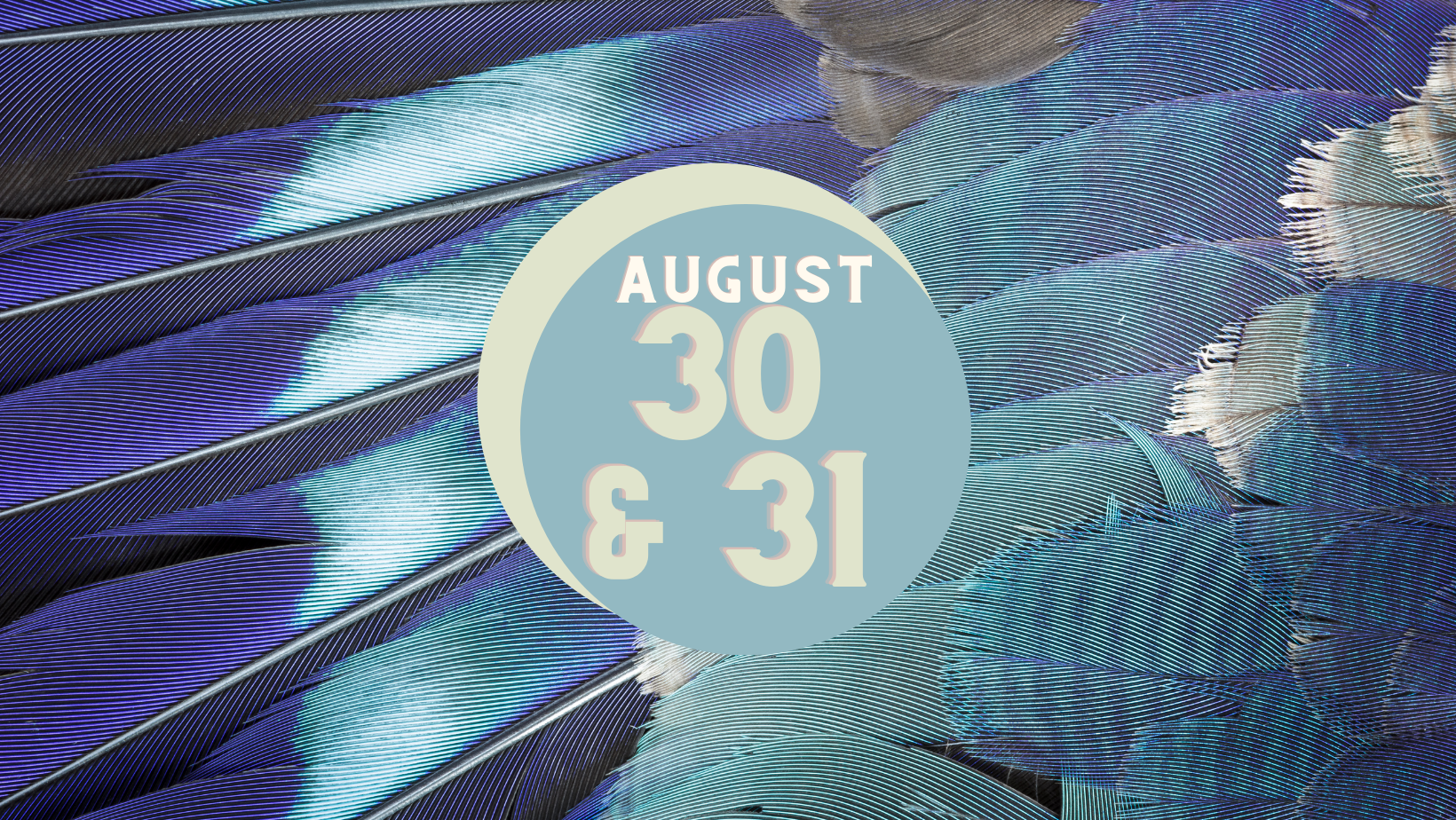 blue and grey feathers with august 30 and 31st written in a circle